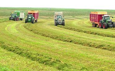 西班牙输华苜蓿草生产加工企业名单