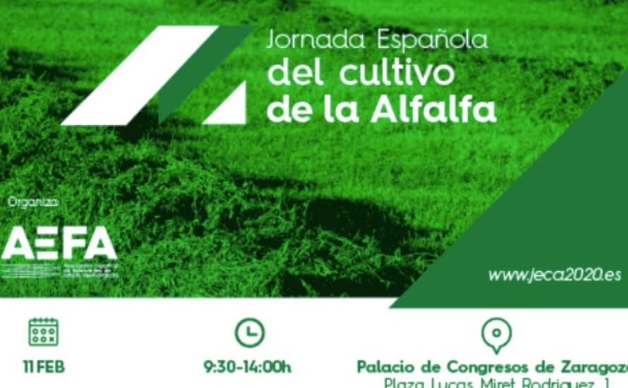 第一届西班牙苜蓿种植日